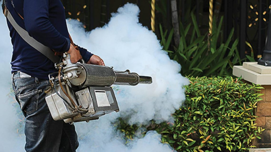 Key Questions to Ask a Pest Control Company